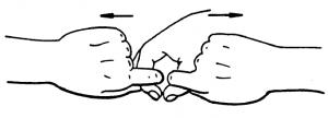 BDORT-fig2