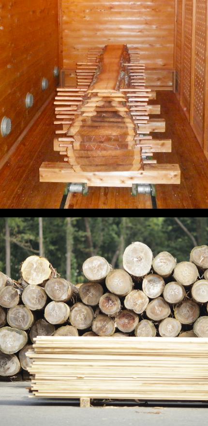 乾燥装置・木材イメージ